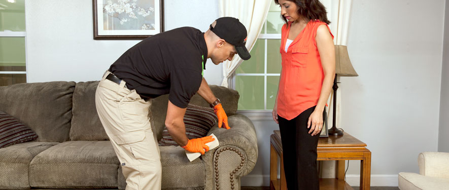 Brownsville, TX carpet upholstery cleaning